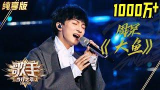 【单曲纯享】周深《大鱼》《歌手2020》当打之年【湖南卫视官方HD】