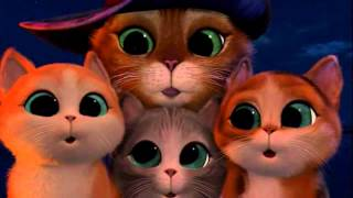 Кот кастрат и три гомосека v 2 0