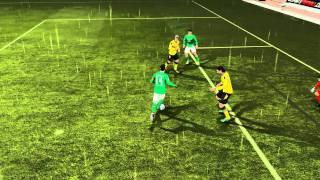 FIFA 12 Foul-Jubel