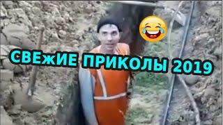 🤣😎 СМЕХ ДО СЛЕЗ  Gifs With Sound  ПРИКОЛЫ 2019 МАЙ 23
