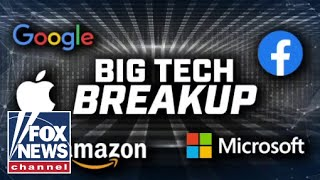 Issue of Big Tech spurs unlikely allies across the political aisle