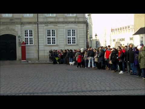 Danish Kid Hits a Police Officer During the Royal Guard's Change.