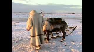 «Тюнтава» - «Ненецкая свадьба»