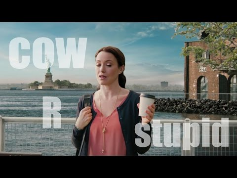 Liberty Mutual: Stupidity Forgiveness