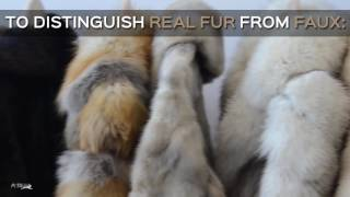 How to Tell the Difference Between Faux and Real Fur