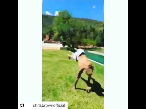 Chris Brown flipping in Spain