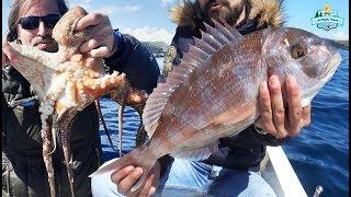 Heyecan Dorukta!! / Bu Hafta Rekor Balıklar Yakaladık!! - 14 Nisan 2019