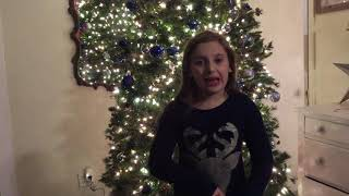 "Amazon Echo Smart Home Automation ""Alexa turn off Christmas Tree"""