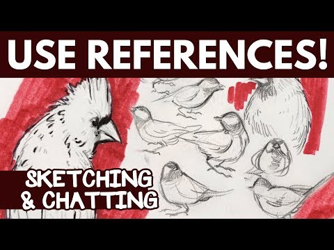Use References When You Draw! (+ why I love birds)