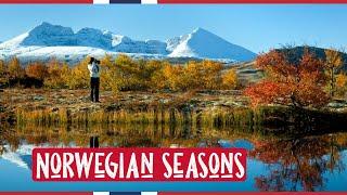 Norwegian Seasons