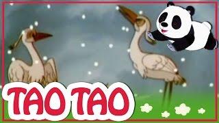 Tao Tao - 14 - ההגירה הגדולה