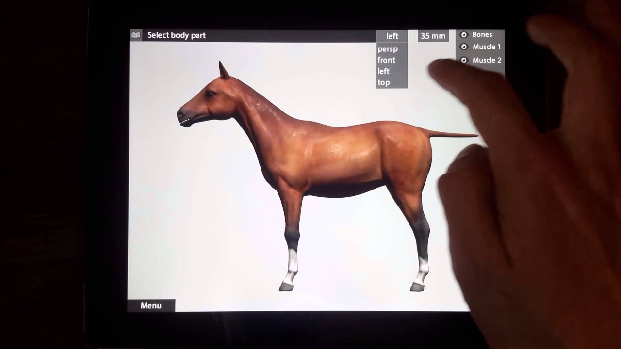 3d Animal Anatomy app for ipad iphone by Max Uzkikh ( horse dog ...