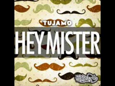hey mister mister