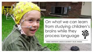 Annika Andersson | On what we can learn from studying children's brains while they process language