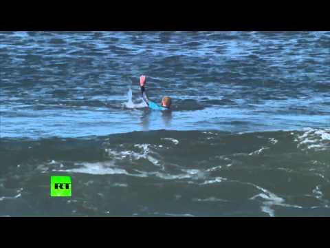 Peur bleue : un requin attaque un surfeur lors d'une compétition internationale