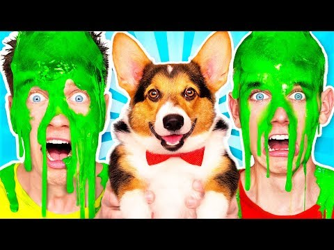Dogs Pick our Mystery Slime Challenge 2 & How to Make the Best Funny DIY Orbeez Switch Up Game