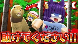 【ゆっくり実況】助けてくださいぃぃぃ!!うp主、ライオンに喰われる!!世界一死ぬかもしれないアスレチックやってみた…【たくっち】【Minecraft風】