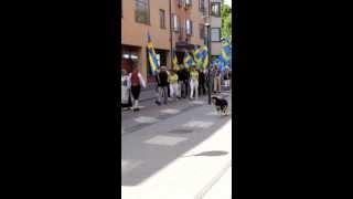 Sveriges nationaldag i Borås