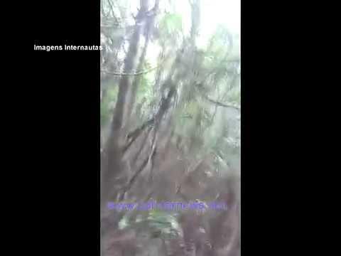 """""""Nita"""" Homem em Colíder e encontrado após 7 meses sumido. (Vídeo"""