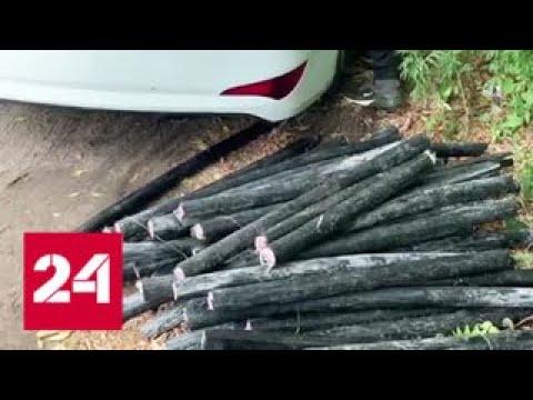 В Жуковском поймали воришек, срезавших почти полкилометра кабеля - Россия 24