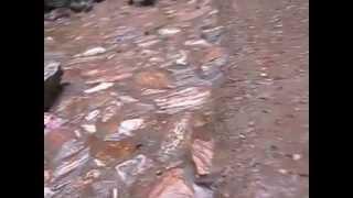 Video | Suối cá thần Cẩm Lương Cẩm Thủy Thanh Hóa 12 8 2012 | Suoi ca than Cam Luong Cam Thuy Thanh Hoa 12 8 2012