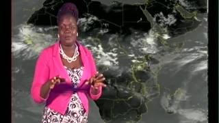 Embeeera y'obudde essuubirwa nga  22 07 2016 ne Agnes Nalukwago