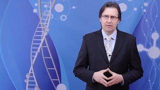 ZAŠTO SE  HOLESTEROL PRETVARA U UBICU? Prof. dr Mihajlović