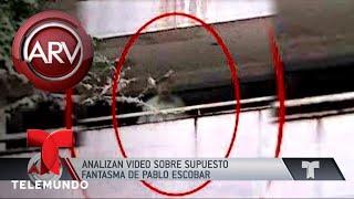 analizan video del fantasma de pablo escobar al rojo vivo telemundo