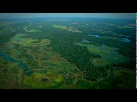 Ciclo das Águas do Pantanal