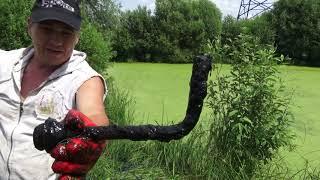 Жуть из болота на поисковый магнит