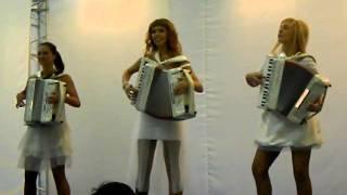 Музыкальное шоу: аккордеон на свадьбе. www.100artistov.ru