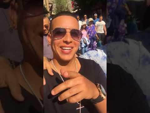 Daddy Yankee Instagram Stories #218