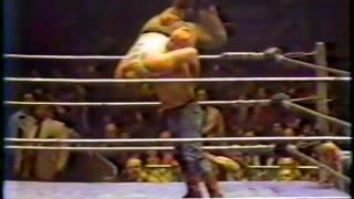WWF Classic Wrestling 1981 #2