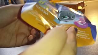 Открываем sweet box пушистики котята