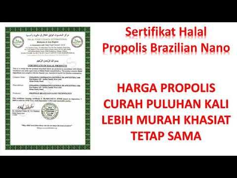 harga-1-paket-propolis-curah-di-bandung-wa-081809867604