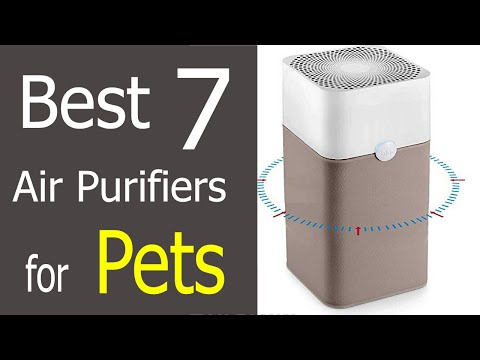 Best 7 Air Purifiers for Pet Odor and Hair