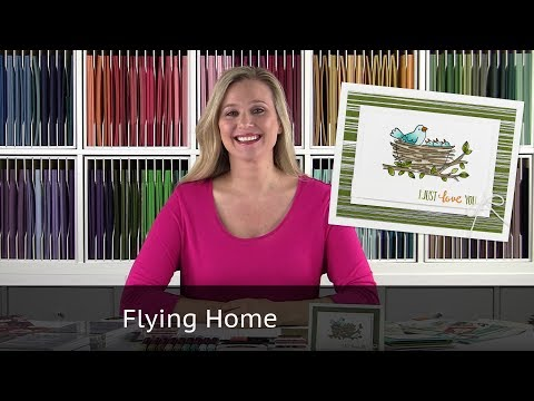 Flying Home Stamp Set from Stampin Up!