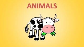 Английский для детей. Учим животных