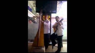 El Aguacate / Duo Arpa & Guitarra de America (2013)
