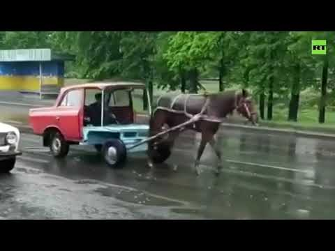 Literally ONE-horse power | Passersby shocked by Soviet-time HORSE-POWERED car