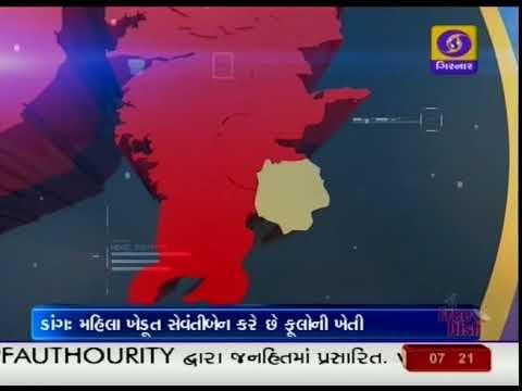 Flowers Farming | Dang | Ground Report Gujarati