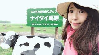 日本最大の牧場!ナイタイ高原牧場Live