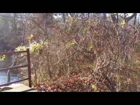 Long Island Greenbelt Trail
