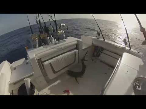 GoPro Offshore lifestyle -Team Double D's