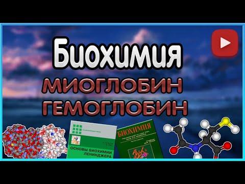 Биохимия. Лекция 5. Гемоглобин. Миоглобин.