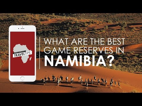What are the best game reserves in Namibia? Rhino Africa's T