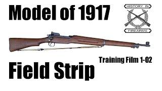 Model 1917 Field Strip (TF 1-02)