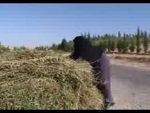 UNDP: Wastewater recycling in Jordan