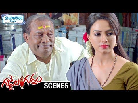 Sana Khan Tempts an Old Man | Gajjala Gurram Telugu Movie Scenes | Suresh Krishna | Shemaroo Telugu