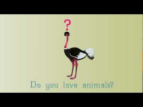 skyenimals intro animated read along children s book animal